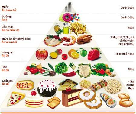 Chế độ dinh dưỡng cho trẻ em học đường - Ảnh 2.