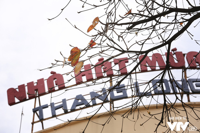 Hà Nội - Có một mùa thay lá cực tình - Ảnh 9.
