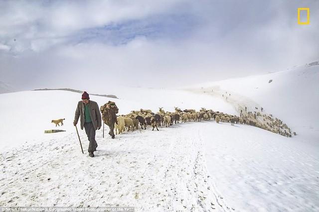Những bức ảnh tuyệt đẹp trong giải thưởng ảnh du lịch của National Geographic 2018 - Ảnh 5.