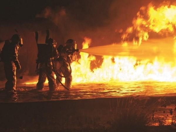 Cháy rừng nghiêm trọng ở ngoại ô Sydney, Australia - Ảnh 3.