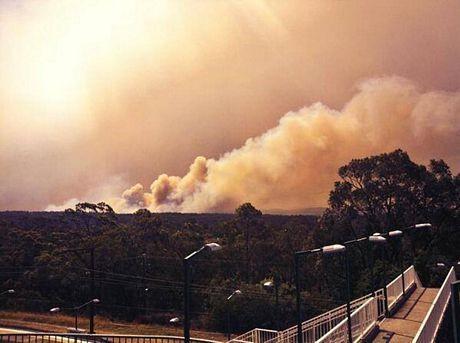 Cháy rừng nghiêm trọng ở ngoại ô Sydney, Australia - Ảnh 1.