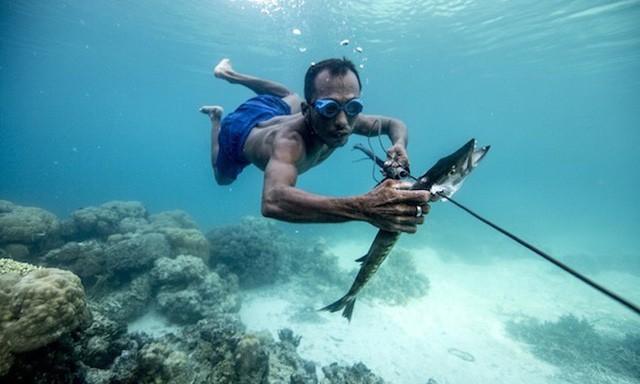 Điều kỳ diệu của tộc người cá có thể nhịn thở 13 phút dưới nước, lặn sâu tới 70m - Ảnh 2.