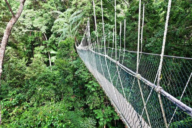 Những công viên quốc gia đẹp nhất Malaysia - Ảnh 2.
