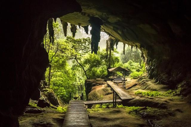 Những công viên quốc gia đẹp nhất Malaysia - Ảnh 6.