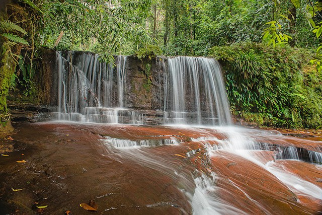 Những công viên quốc gia đẹp nhất Malaysia - Ảnh 8.