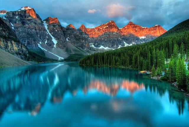 Những khu rừng đẹp nhất thế giới - Ảnh 1.