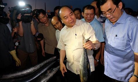 Thủ tướng mua cá và tặng quà ngư dân tại Cảng cá Cửa Việt - Ảnh 1.