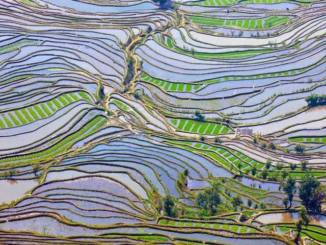 Chiêm ngưỡng vẻ đẹp kì lạ của Trái đất qua 25 bức ảnh - Ảnh 3.