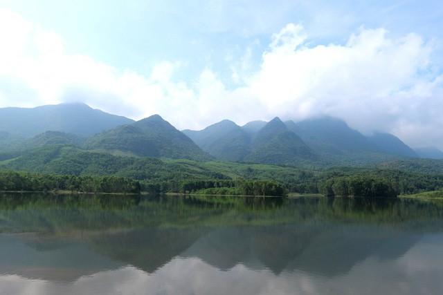 Xua cái nắng hè oi ả ở cánh đồng sen tuyệt đẹp của Quảng Nam - Ảnh 9.