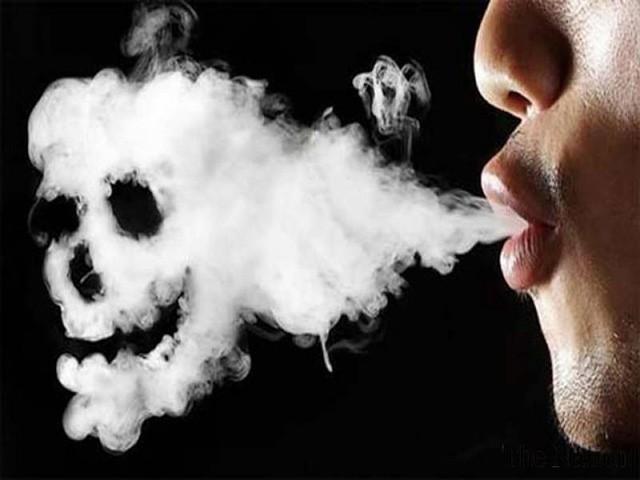 Thuốc lá và những tác hại khó lường - Ảnh 2.