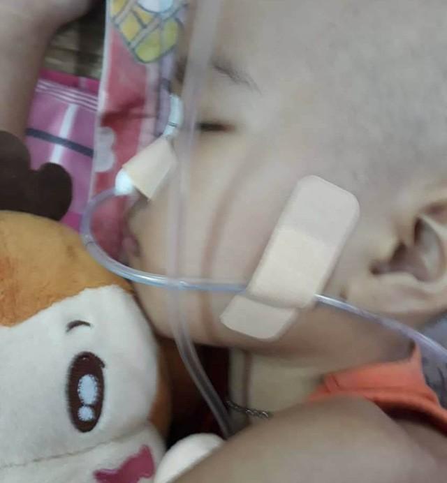 Thương bé gái người Tày vừa bị ung thư máu vừa hoại tử chân - Ảnh 5.