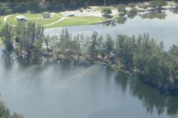 Mỹ: Một phụ nữ mất tích sau khi bị cá sấu lôi xuống hồ - Ảnh 1.