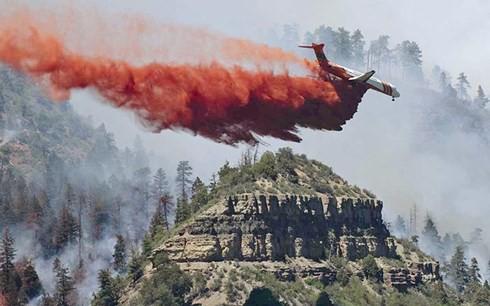 Hàng nghìn người tại Colorado (Mỹ) sơ tán vì cháy rừng dữ dội - Ảnh 1.