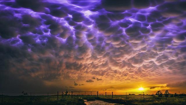 Những hiện tượng thiên nhiên kì thú - Ảnh 6.
