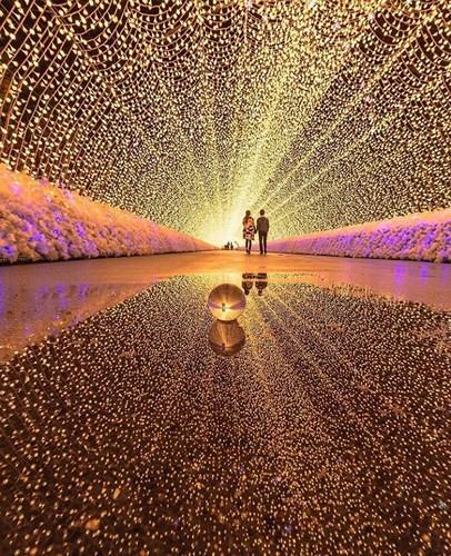 Những bức ảnh nghệ thuật đẹp lung linh, đầy sáng tạo - Ảnh 5. Những bức ảnh nghệ thuật đẹp lung linh, đầy sáng tạo