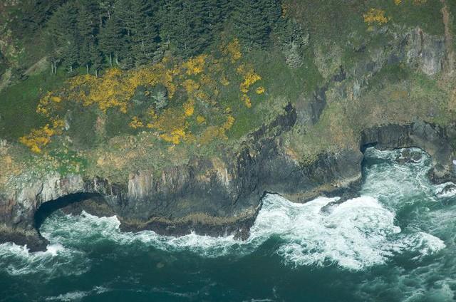 Lạc lối trong 8 hang động biển đẹp nhất thế giới - Ảnh 15.