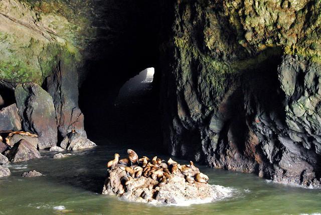 Lạc lối trong 8 hang động biển đẹp nhất thế giới - Ảnh 16.