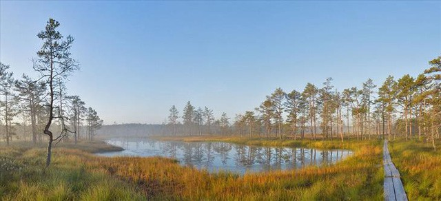 Tại sao lại gọi Estonia là viên ngọc bí ẩn của Đông Âu? - Ảnh 8.
