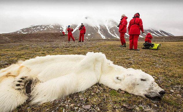 Con người sẽ sống sót như thế nào nếu Trái Đất nóng thêm 2 độ C? - Ảnh 4.