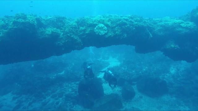 Quảng Ngãi: Kỳ thú vòm đá núi lửa hàng triệu năm tuổi dưới đáy biển - Ảnh 1.