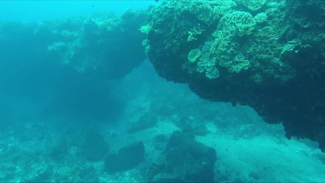 Quảng Ngãi: Kỳ thú vòm đá núi lửa hàng triệu năm tuổi dưới đáy biển - Ảnh 2.