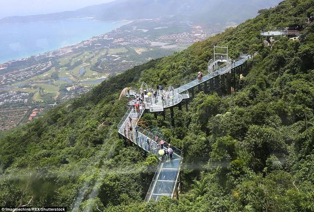 Trung Quốc mở cửa cầu đáy kính đi xuyên rừng ở độ cao 450m - Ảnh 1.