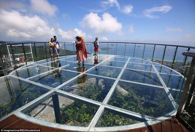 Trung Quốc mở cửa cầu đáy kính đi xuyên rừng ở độ cao 450m - Ảnh 2.