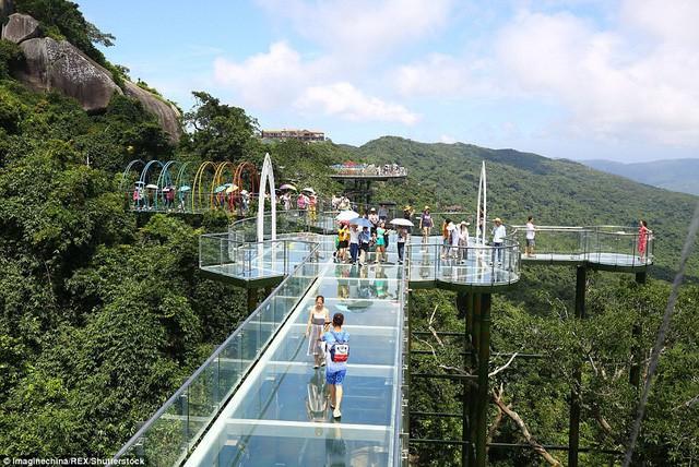 Trung Quốc mở cửa cầu đáy kính đi xuyên rừng ở độ cao 450m - Ảnh 6.