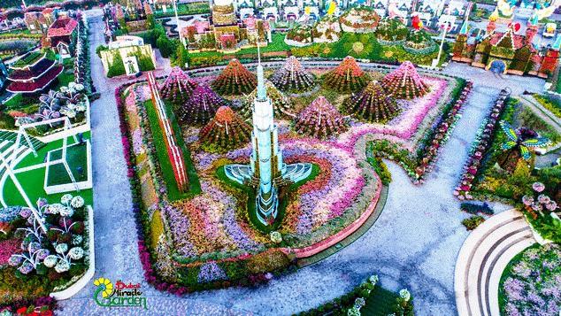 Vườn hoa khổng lồ giữa... sa mạc Trung Đông - Ảnh 10.