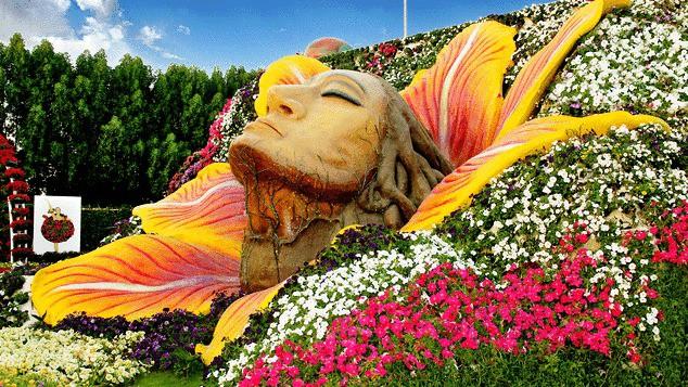 Vườn hoa khổng lồ giữa... sa mạc Trung Đông - Ảnh 3.