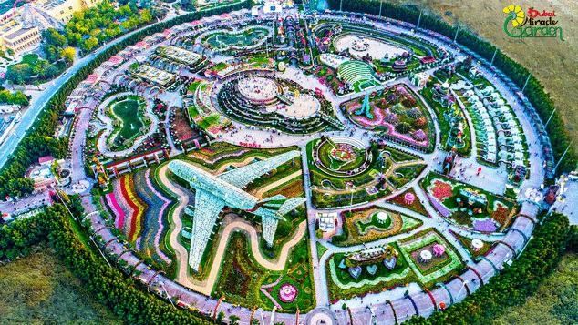 Vườn hoa khổng lồ giữa... sa mạc Trung Đông - Ảnh 2.