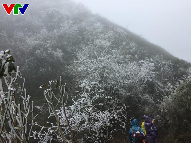 Băng tuyết tuyệt đẹp ở Sa Pa khiến du khách thích thú - Ảnh 1.