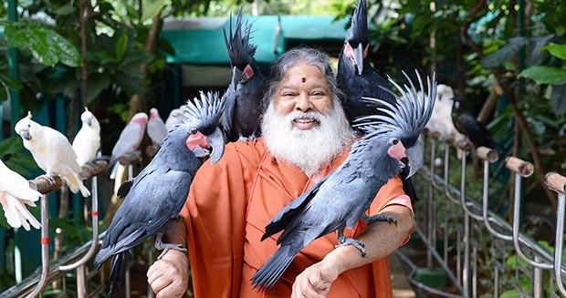 Khu vườn nhiều chim nhất thế giới - Ảnh 5.