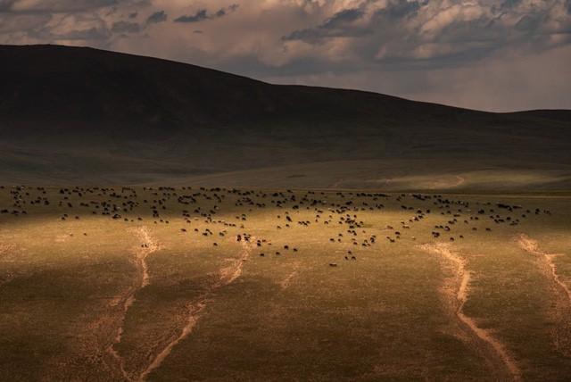 Thiên nhiên hùng vĩ ở Kyrgyzstan - Ảnh 3.