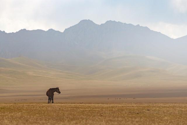 Thiên nhiên hùng vĩ ở Kyrgyzstan - Ảnh 9.