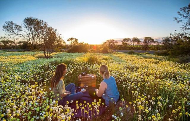 Mùa xuân đẹp như tranh vẽ ở phía bên kia trái đất - Ảnh 9.