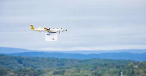 Công ty đầu tiên ở Mỹ giao hàng bằng máy bay không người lái - Ảnh 1.