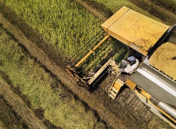 Tương lai nông nghiệp: Cần hài hòa giữa canh tác nông nghiệp và bảo vệ môi trường - Ảnh 2.