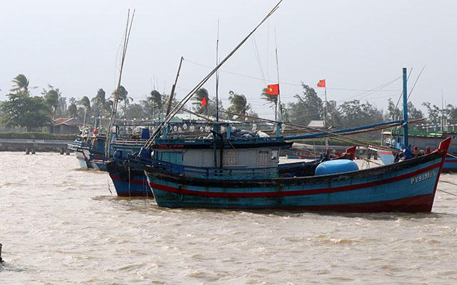 Fishing boats of Phu Yen fishermen anchor safely in Tuy Hoa city. (Photo: NDO/Trinh Ke)