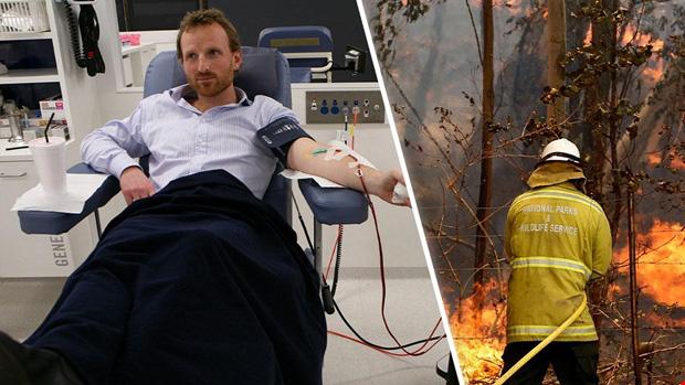 Hội Chữ thập đỏ Úc kêu gọi hiến máu khẩn cấp sau thảm họa cháy rừng - Ảnh 1.