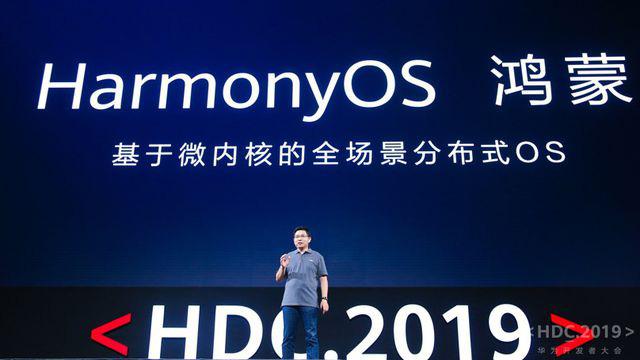 Huawei bất ngờ bán Mate 30 Pro tại Việt Nam, cài Harmony OS - ảnh 2