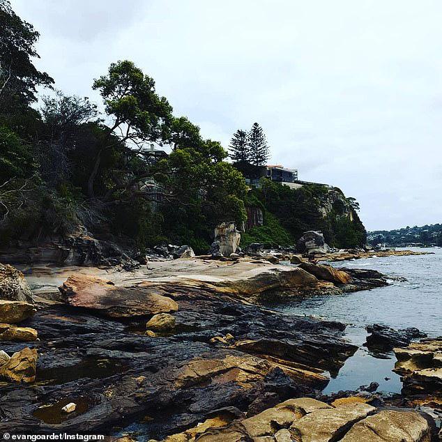 Biển Australia biến màu đen do thảm hoạ cháy rừng - ảnh 3