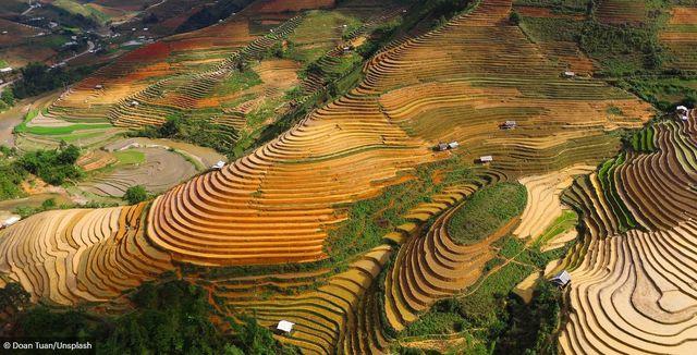 Báo Anh giới thiệu chùm ảnh tuyệt đẹp về Việt Nam - Ảnh 16.