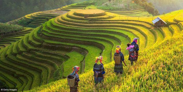 Báo Anh giới thiệu chùm ảnh tuyệt đẹp về Việt Nam - Ảnh 5.
