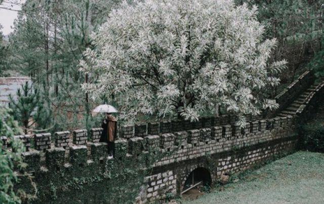 Ngỡ ngàng với 4 địa danh Vạn lý trường thành đẹp mê hồn ở Việt Nam - Ảnh 6.