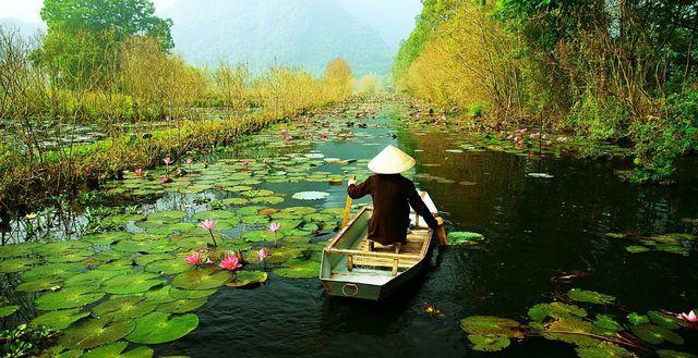 Báo Anh giới thiệu chùm ảnh tuyệt đẹp về Việt Nam - Ảnh 11.