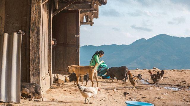 5 điểm săn mây đẹp nhất Việt Nam không thể bỏ lỡ trong tháng 3 - ảnh 4