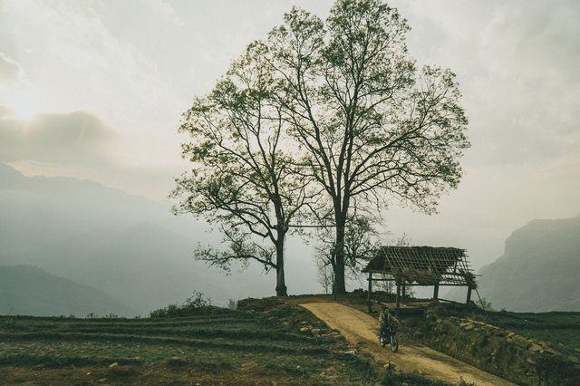 5 điểm săn mây đẹp nhất Việt Nam không thể bỏ lỡ trong tháng 3 - ảnh 6