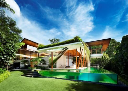 Ngôi nhà xanh mướt với vườn trên mái - Ảnh 2.