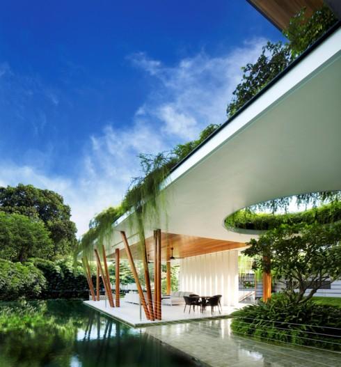 Ngôi nhà xanh mướt với vườn trên mái - Ảnh 6.